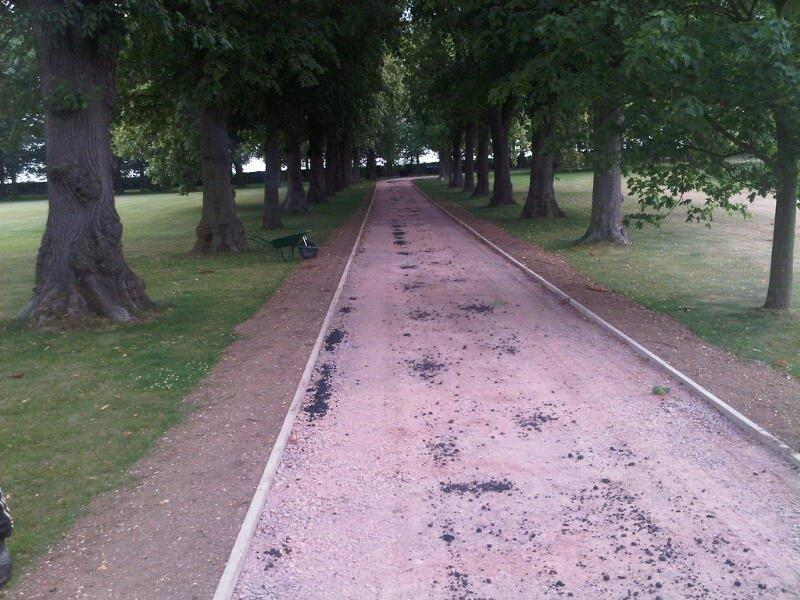 Total Surfacing Solutions forest path